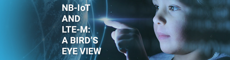 NB-IoT and LTE-M: A Bird's Eye View